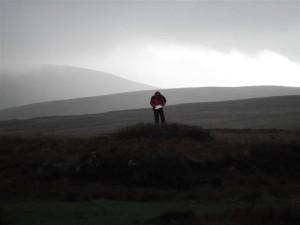 Surveying peatlands