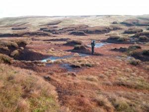 Anastomosing erosion complex