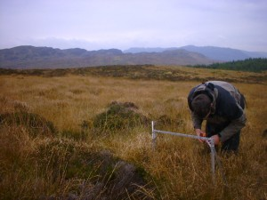 Pin frame survey on an upland site